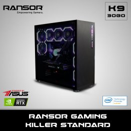 RANSOR Gaming Killer Standard Edition: Intel Core i9-10900K, NVIDIA GeForce RTX 3080 10 GB, 32 GB RGB RAM, 1 TB NVME, 1 TB SSD, 850W Gold PSU - 1 Year Warranty - RNSR-PC-K3080-STD-01