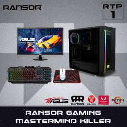 RANSOR Gaming Mastermind Killer RTP-1: 3200G, 16GB RAM, 1 TB SSD, 700W PSU + Asus VP228HE Gaming Monitor - 1 Year Warranty + Mousepad + Keyboard and mouse